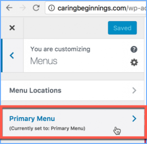 Selecting the Primary Menu for Customization in the WordPress Theme Customizer