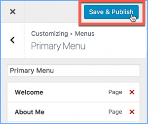 Save and Publish Button in WordPress Theme Customizer